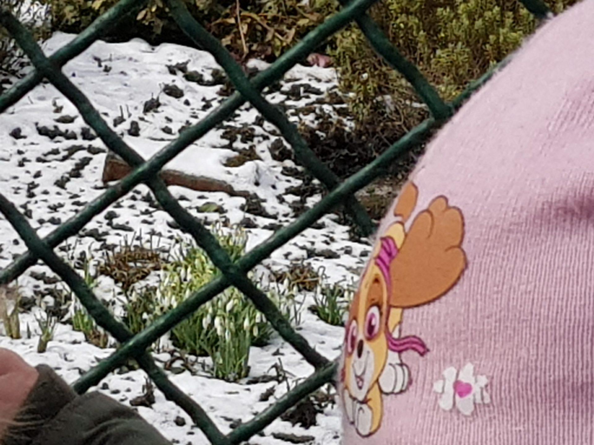 Wiosna ? Ach, to TY !